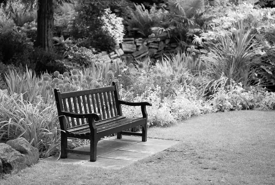 Bench, Yorkshire Museum Gardens : monochrom : TIMOTHY FLOYD PHOTOGRAPHER, NATURE PHOTOGRAPHY, PHOTO ESSAYS, PHOTOJOURNALISM