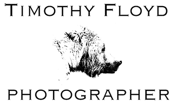 TIMOTHY FLOYD PHOTOGRAPHER, NATURE PHOTOGRAPHY, PHOTO ESSAYS, PHOTOJOURNALISM