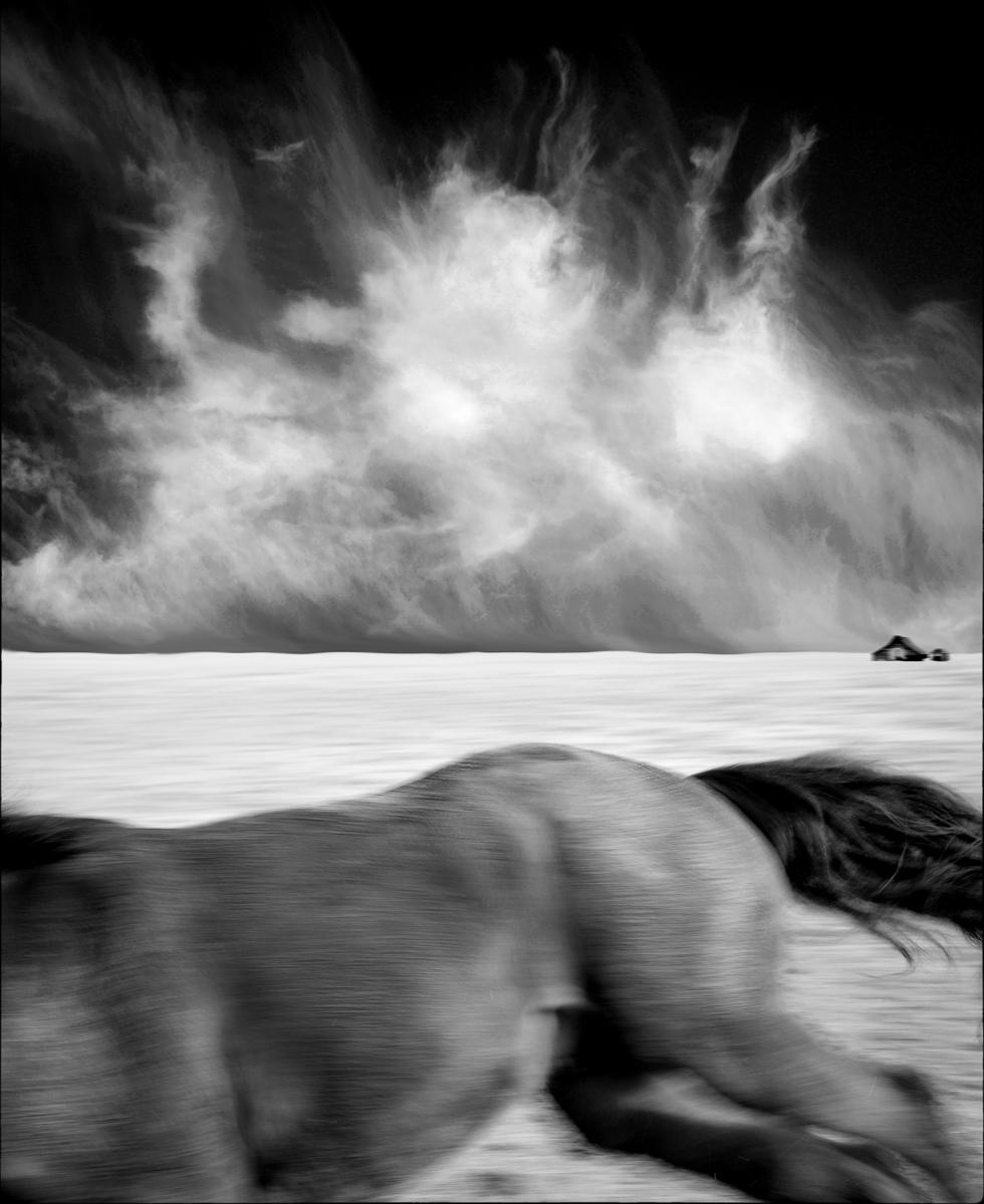 Apologies to Mr. Uelsman : equus et al : TIMOTHY FLOYD PHOTOGRAPHER, NATURE PHOTOGRAPHY, PHOTO ESSAYS, PHOTOJOURNALISM