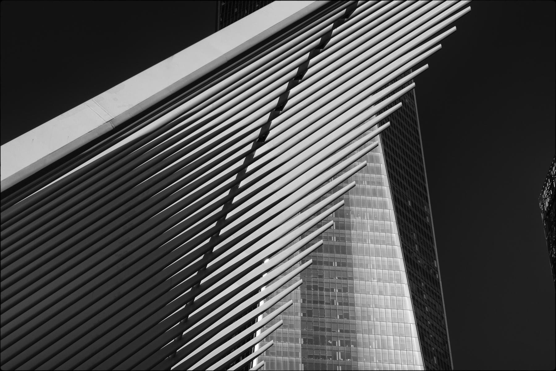 Oculus and World Trade Center, New York : street & stories : TIMOTHY FLOYD PHOTOGRAPHER, NATURE PHOTOGRAPHY, PHOTO ESSAYS, PHOTOJOURNALISM