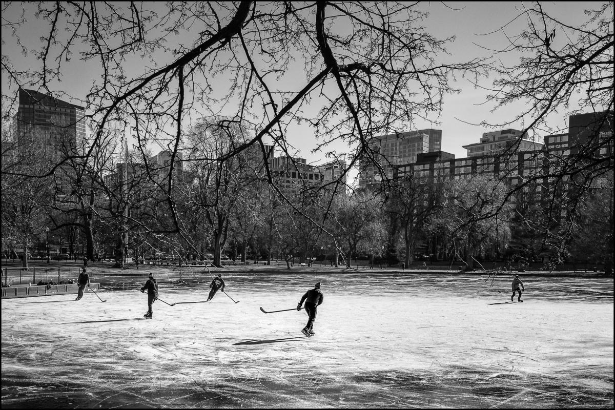 Boston Commons : street & stories : TIMOTHY FLOYD PHOTOGRAPHER, NATURE PHOTOGRAPHY, PHOTO ESSAYS, PHOTOJOURNALISM